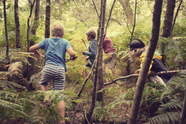 woodland boys